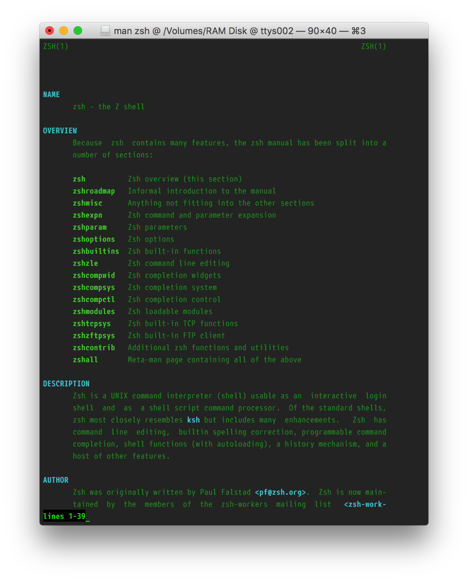 Screenshot of the zsh manpage with the customized style.